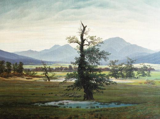FC-004 Dorflandschaft bei Morgenb.( Einsamer Baum)_RL