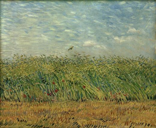 Kunstdruck Getreidefeld Mit Mohnblumen Und Rebhuhn Von